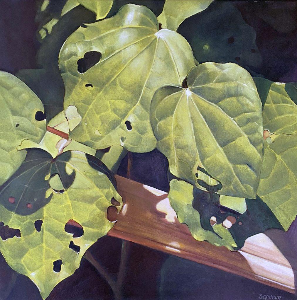 NZ Kawakawa Art