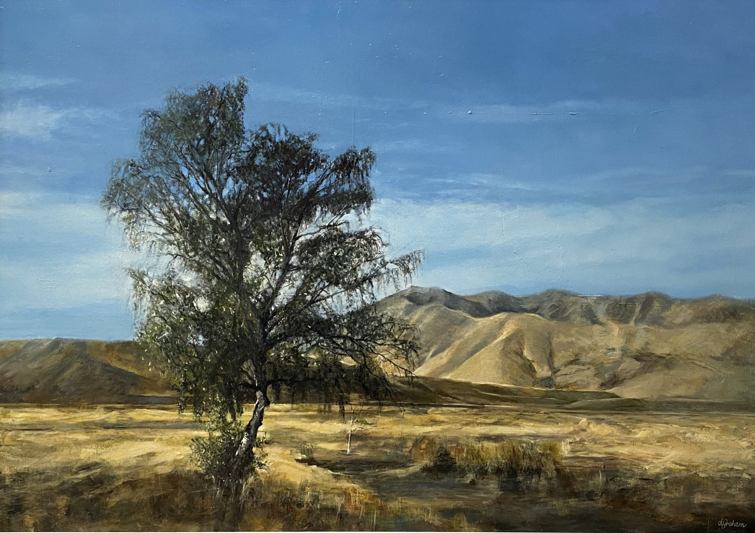 NZ Landscape Painting
