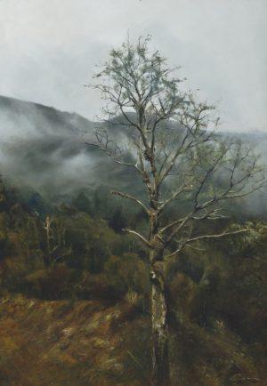 Isolation Tree